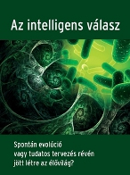 Az intelligens vlasz